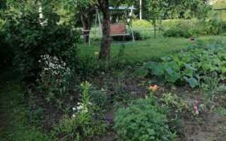 Договор купли-продажи земельного садового участка