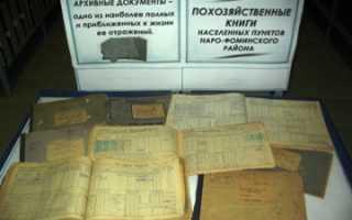 выписка из похозяйственной книги на земельный участок (образец и бланк)