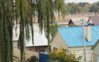 Договор аренды дома с земельным участком