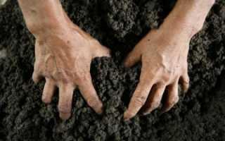 Самовольный захват земли: что это такое и чем грозит