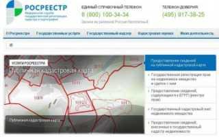 Публичная кадастровая карта Тверской области